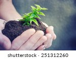 hand and plant | Shutterstock . vector #251312260