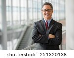 portrait of a handsome ceo... | Shutterstock . vector #251320138