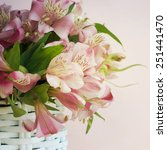 bouquet of alstroemeria | Shutterstock . vector #251441470