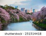 tokyo  japan   april 6  2014 ... | Shutterstock . vector #251514418