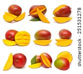 collection of mango isolated on ... | Shutterstock . vector #251531278