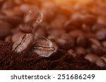 roasting coffee with smoke | Shutterstock . vector #251686249