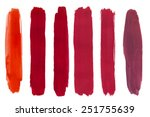 set of cosmetic texture brush... | Shutterstock .eps vector #251755639