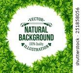natural frame of fresh green...   Shutterstock .eps vector #251858056