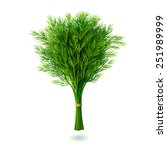 bunch of fresh dill with shadow ... | Shutterstock .eps vector #251989999