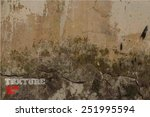 grunge background with space...   Shutterstock .eps vector #251995594