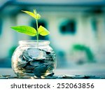 sprout growing on glass piggy... | Shutterstock . vector #252063856