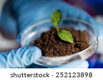 science  biology  ecology ... | Shutterstock . vector #252123898
