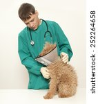 vet examining an red toy poodle | Shutterstock . vector #252264658