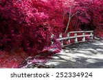 road and autumn nature.ditch... | Shutterstock . vector #252334924
