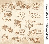 spices doodles vector set | Shutterstock .eps vector #252358990