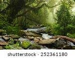 nepal jungle | Shutterstock . vector #252361180