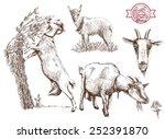 breeding goats. hand drawn...   Shutterstock .eps vector #252391870