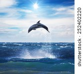 dolphin jumping from open water ... | Shutterstock . vector #252402220