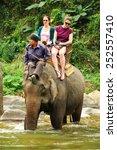 chiang mai  thailand   february ... | Shutterstock . vector #252557410