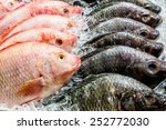 fresh fish in the market | Shutterstock . vector #252772030