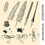 hand drawn feathers and curls... | Shutterstock .eps vector #252824590