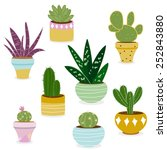 Cactus And Succulent Plants In...