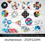 vector circular infographics...