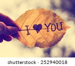 A Hand Holding A Leaf That...