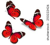 Stock photo three red butterfly isolated on white background 253222426