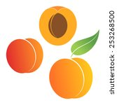 Peach. Vector Illustration....