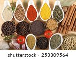 spices in ceramic containers... | Shutterstock . vector #253309564