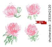 pink chrysanthemum illustration ... | Shutterstock .eps vector #253342120