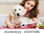 girl owner is cleaning teeth of ... | Shutterstock . vector #253347088