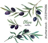 vector  watercolor  olive  set | Shutterstock .eps vector #253394086