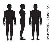 human body anatomy  vector man... | Shutterstock .eps vector #253516723
