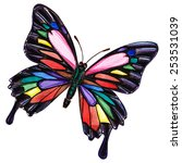 Butterfly Multi Colored