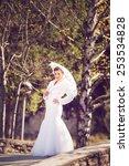 beautiful bride  | Shutterstock . vector #253534828