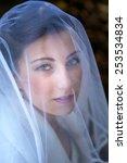 portrait of beautiful bride | Shutterstock . vector #253534834