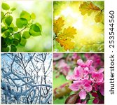 four seasons. a pictures that... | Shutterstock . vector #253544560