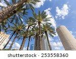 Downtown Tampa  Florida Daytime