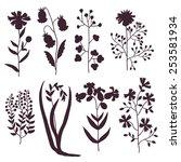 set with meadow flowers. vector ... | Shutterstock .eps vector #253581934
