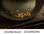 Found Gold. Gold Panning Or...