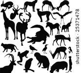 wild animals vector   Shutterstock .eps vector #25371478