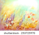 meadow flowers  made with color ... | Shutterstock . vector #253725970