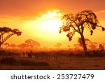 Typical African Sunset With...