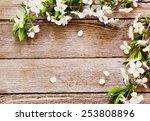 flowers on wooden background | Shutterstock . vector #253808896