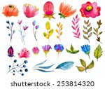 Stock vector beautiful watercolor flower set over white background for design 253814320