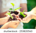 children holding young plant in ... | Shutterstock . vector #253820563