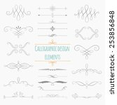 graphic elements calligraphic... | Shutterstock .eps vector #253856848