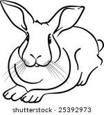 rabbit | Shutterstock .eps vector #25392973