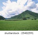 agriculture details | Shutterstock . vector #25402591