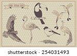 birds vector set. hand drawn... | Shutterstock .eps vector #254031493