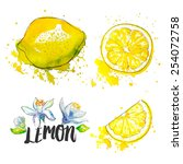 lemon. vector illustration | Shutterstock .eps vector #254072758