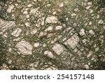 Serpentinite detail - stock photo